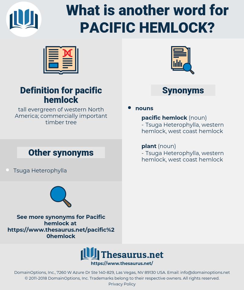 pacific hemlock, synonym pacific hemlock, another word for pacific hemlock, words like pacific hemlock, thesaurus pacific hemlock
