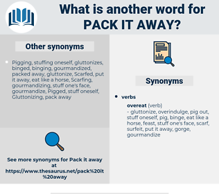 pack it away, synonym pack it away, another word for pack it away, words like pack it away, thesaurus pack it away