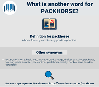packhorse, synonym packhorse, another word for packhorse, words like packhorse, thesaurus packhorse