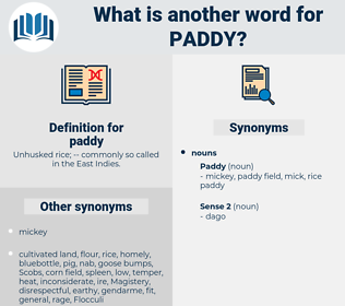 paddy, synonym paddy, another word for paddy, words like paddy, thesaurus paddy