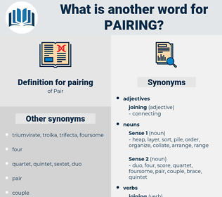 pairing, synonym pairing, another word for pairing, words like pairing, thesaurus pairing