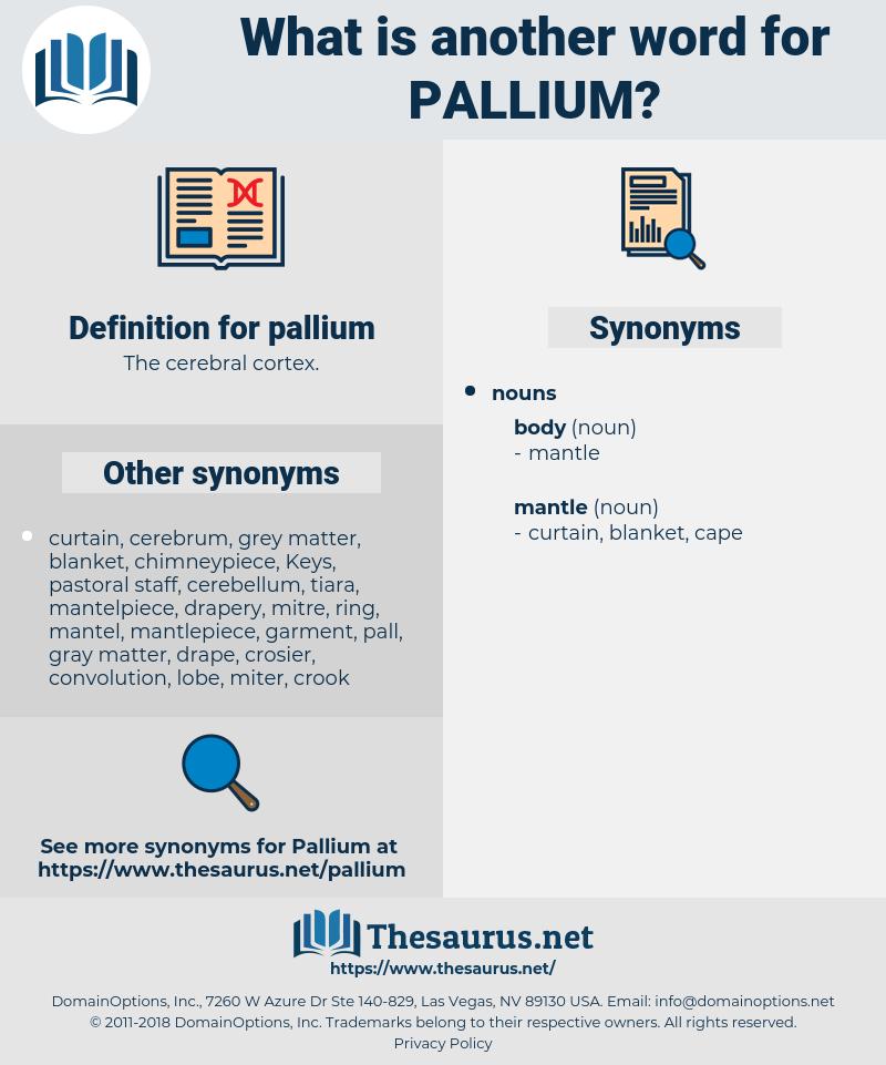 pallium, synonym pallium, another word for pallium, words like pallium, thesaurus pallium