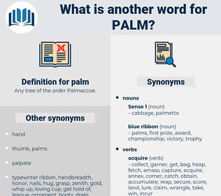 palm, synonym palm, another word for palm, words like palm, thesaurus palm