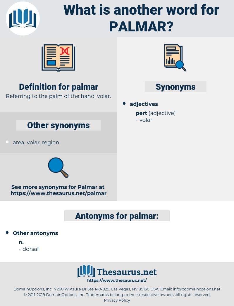 palmar, synonym palmar, another word for palmar, words like palmar, thesaurus palmar