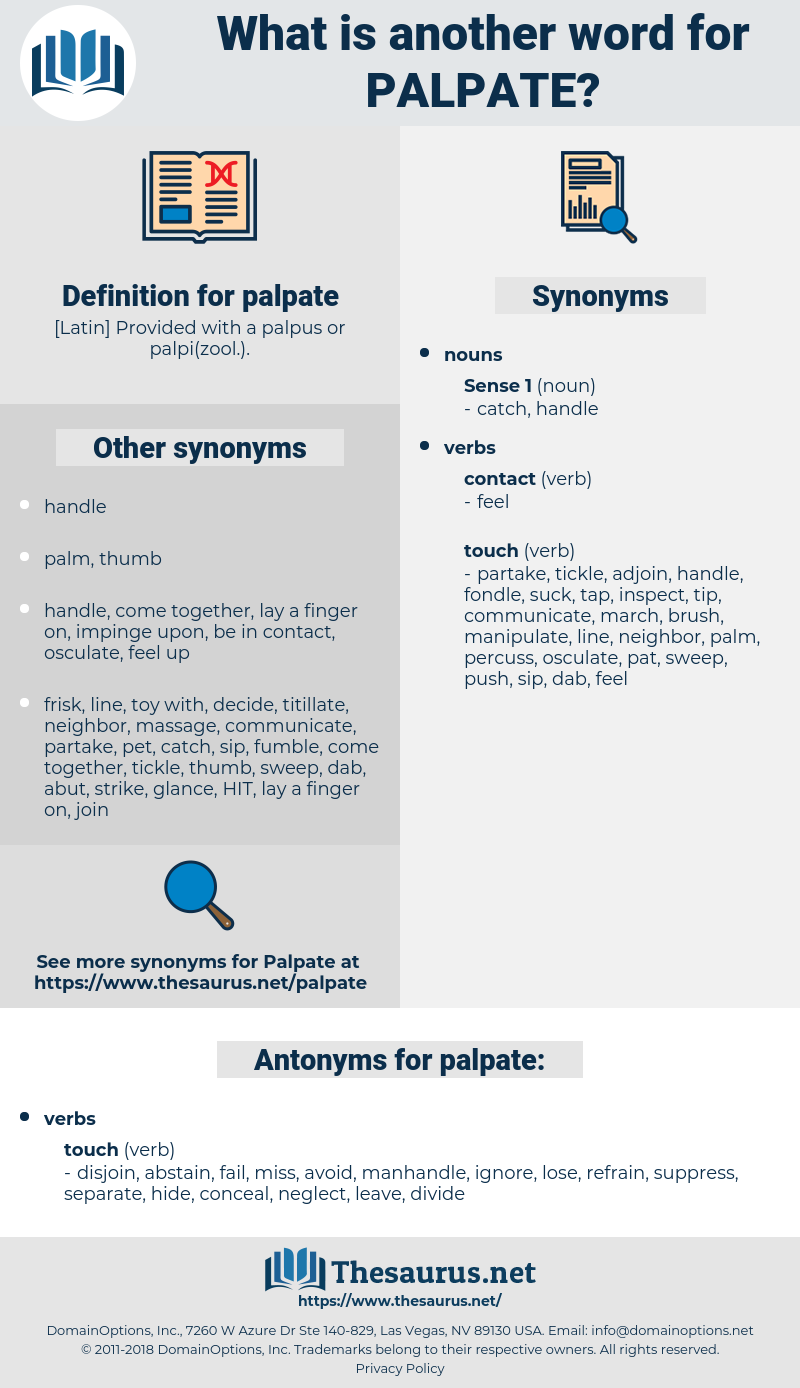 palpate, synonym palpate, another word for palpate, words like palpate, thesaurus palpate