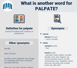 palpate, synonym palpate, another word for palpate, words like palpate, thesaurus palpate