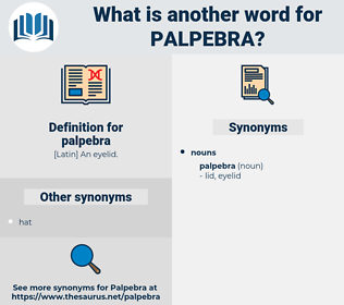 palpebra, synonym palpebra, another word for palpebra, words like palpebra, thesaurus palpebra