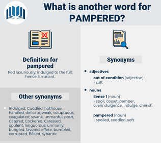 pampered, synonym pampered, another word for pampered, words like pampered, thesaurus pampered