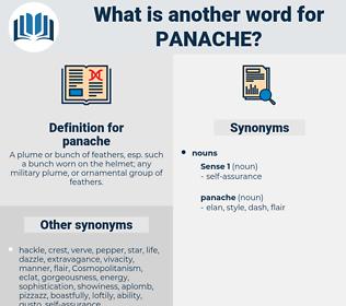 panache, synonym panache, another word for panache, words like panache, thesaurus panache