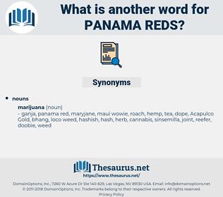 panama reds, synonym panama reds, another word for panama reds, words like panama reds, thesaurus panama reds
