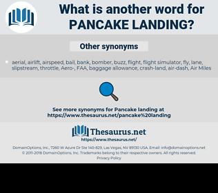 pancake landing, synonym pancake landing, another word for pancake landing, words like pancake landing, thesaurus pancake landing