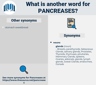 pancreases, synonym pancreases, another word for pancreases, words like pancreases, thesaurus pancreases