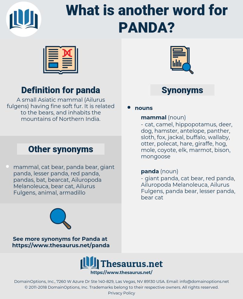panda, synonym panda, another word for panda, words like panda, thesaurus panda