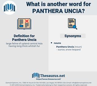 Panthera Uncia, synonym Panthera Uncia, another word for Panthera Uncia, words like Panthera Uncia, thesaurus Panthera Uncia