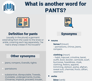 pants, synonym pants, another word for pants, words like pants, thesaurus pants