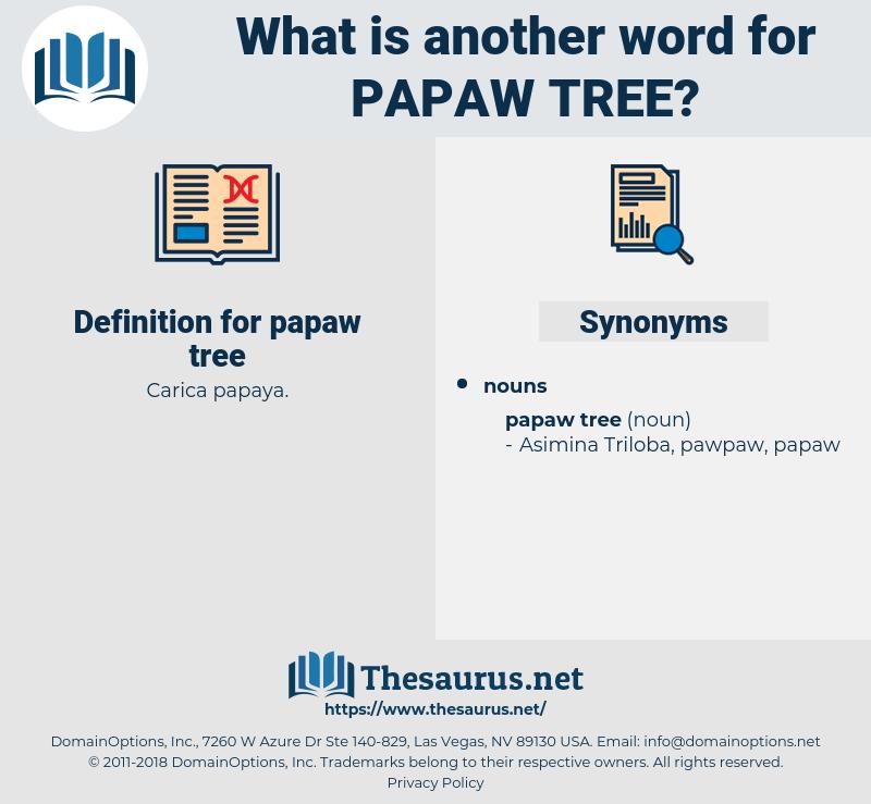 papaw tree, synonym papaw tree, another word for papaw tree, words like papaw tree, thesaurus papaw tree