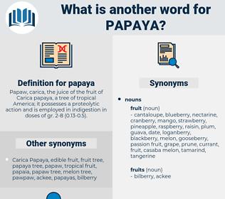 papaya, synonym papaya, another word for papaya, words like papaya, thesaurus papaya