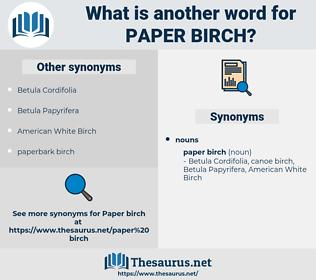 paper birch, synonym paper birch, another word for paper birch, words like paper birch, thesaurus paper birch