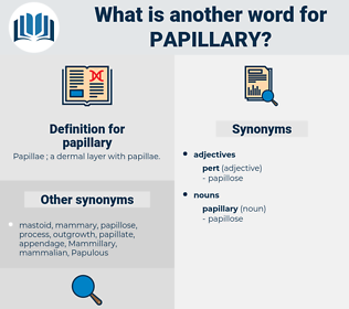 papillary, synonym papillary, another word for papillary, words like papillary, thesaurus papillary