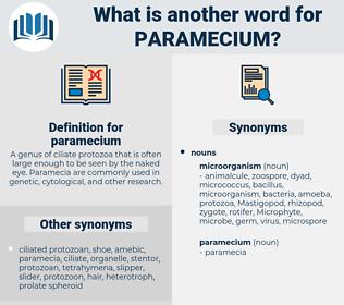 paramecium, synonym paramecium, another word for paramecium, words like paramecium, thesaurus paramecium