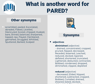 Pared, synonym Pared, another word for Pared, words like Pared, thesaurus Pared