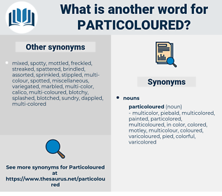 particoloured, synonym particoloured, another word for particoloured, words like particoloured, thesaurus particoloured