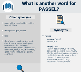 passel, synonym passel, another word for passel, words like passel, thesaurus passel