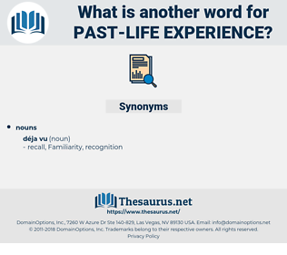 past life experience, synonym past life experience, another word for past life experience, words like past life experience, thesaurus past life experience