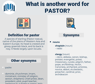 pastor, synonym pastor, another word for pastor, words like pastor, thesaurus pastor