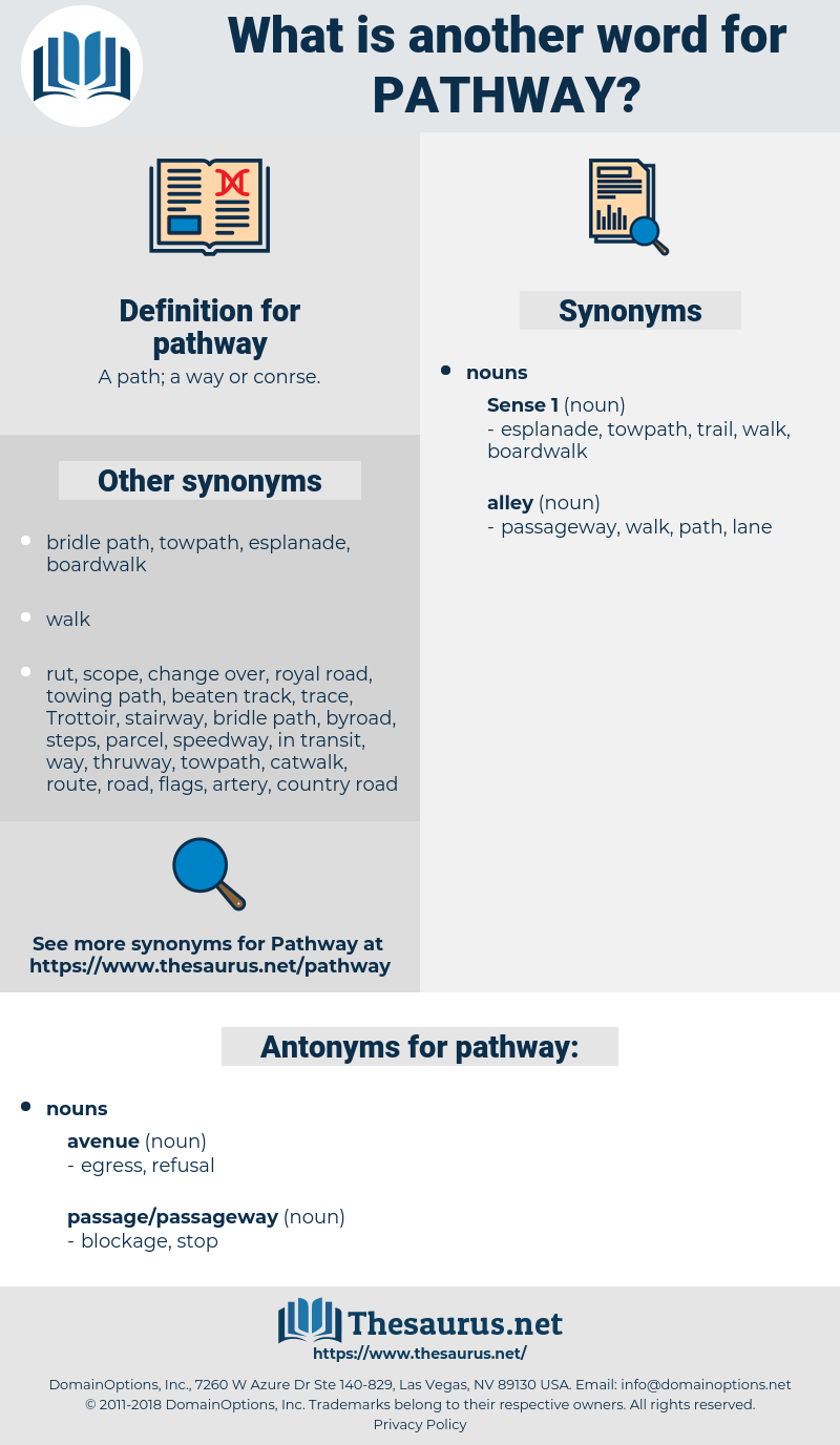 pathway, synonym pathway, another word for pathway, words like pathway, thesaurus pathway