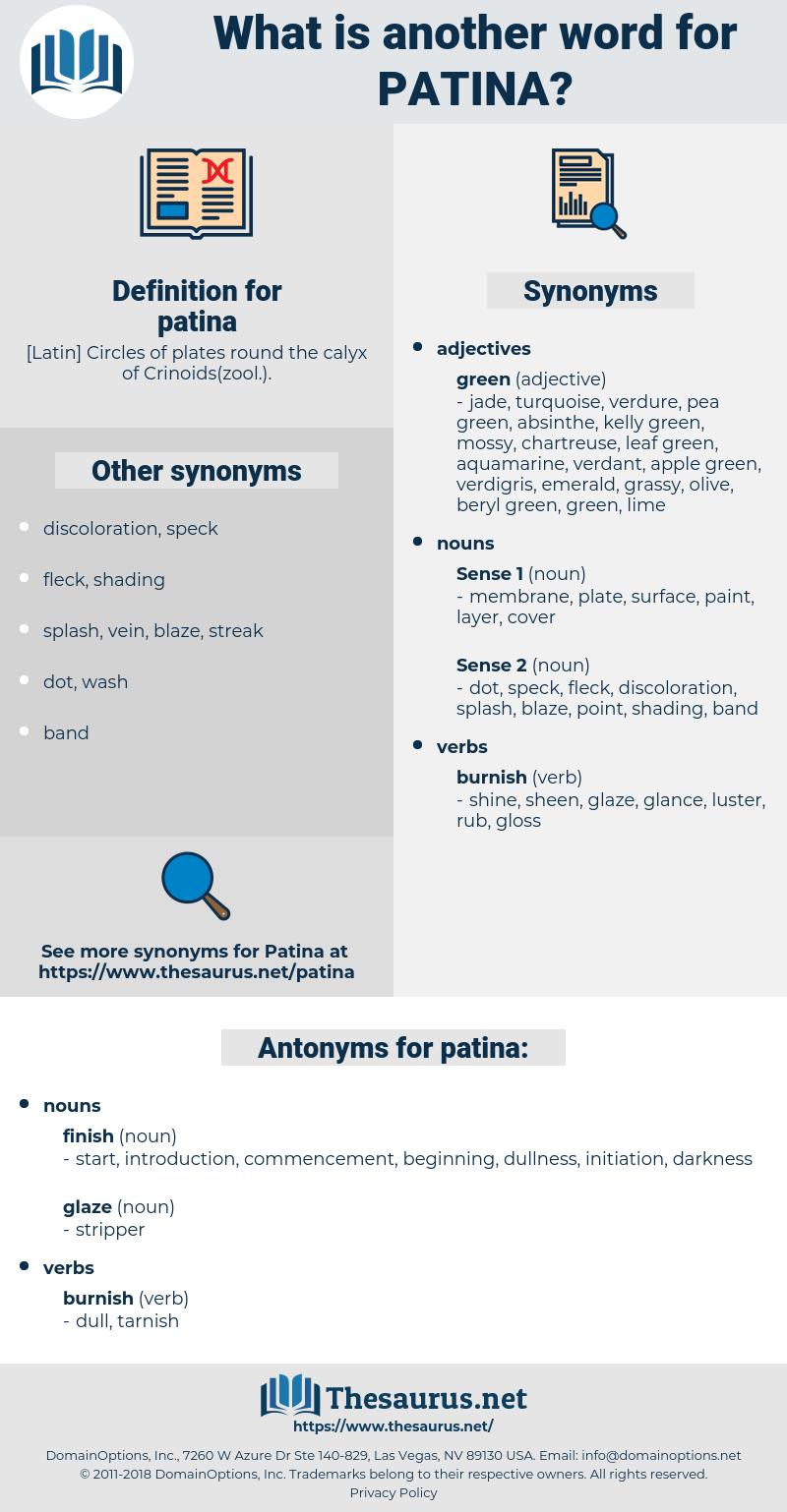 patina, synonym patina, another word for patina, words like patina, thesaurus patina