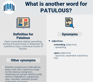 Patulous, synonym Patulous, another word for Patulous, words like Patulous, thesaurus Patulous