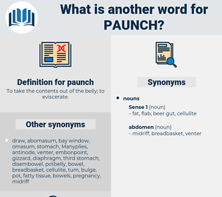 paunch, synonym paunch, another word for paunch, words like paunch, thesaurus paunch