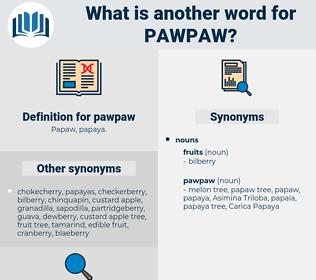 pawpaw, synonym pawpaw, another word for pawpaw, words like pawpaw, thesaurus pawpaw