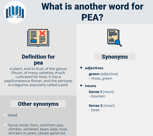 pea, synonym pea, another word for pea, words like pea, thesaurus pea