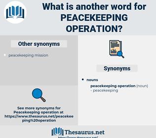 peacekeeping operation, synonym peacekeeping operation, another word for peacekeeping operation, words like peacekeeping operation, thesaurus peacekeeping operation