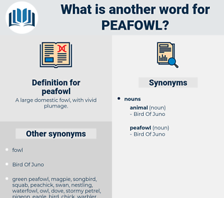 peafowl, synonym peafowl, another word for peafowl, words like peafowl, thesaurus peafowl