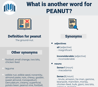 peanut, synonym peanut, another word for peanut, words like peanut, thesaurus peanut