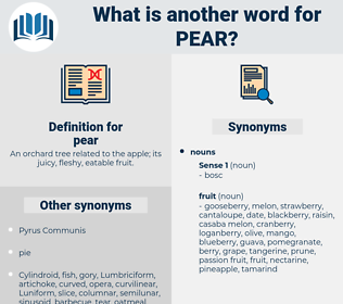 pear, synonym pear, another word for pear, words like pear, thesaurus pear