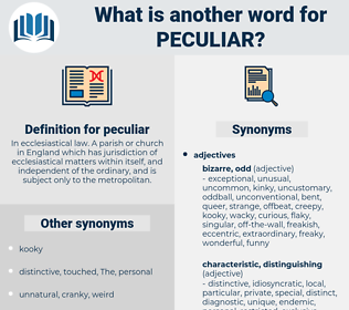 peculiar, synonym peculiar, another word for peculiar, words like peculiar, thesaurus peculiar