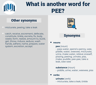 pee, synonym pee, another word for pee, words like pee, thesaurus pee