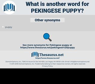 pekingese puppy, synonym pekingese puppy, another word for pekingese puppy, words like pekingese puppy, thesaurus pekingese puppy