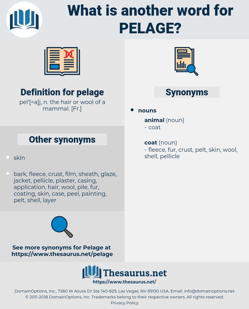 pelage, synonym pelage, another word for pelage, words like pelage, thesaurus pelage