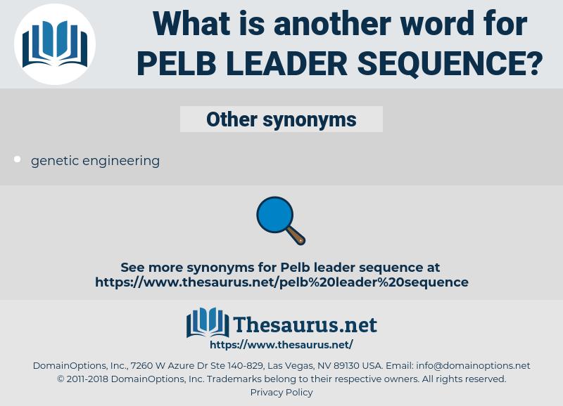 pelb leader sequence, synonym pelb leader sequence, another word for pelb leader sequence, words like pelb leader sequence, thesaurus pelb leader sequence