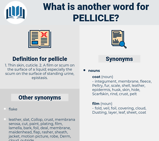 pellicle, synonym pellicle, another word for pellicle, words like pellicle, thesaurus pellicle