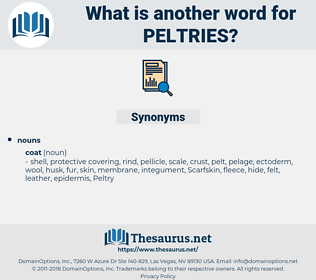 peltries, synonym peltries, another word for peltries, words like peltries, thesaurus peltries