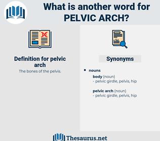 pelvic arch, synonym pelvic arch, another word for pelvic arch, words like pelvic arch, thesaurus pelvic arch