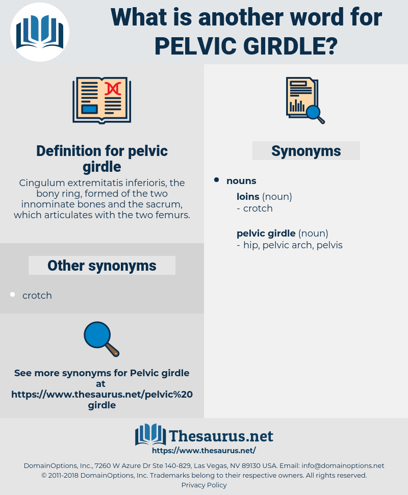 pelvic girdle, synonym pelvic girdle, another word for pelvic girdle, words like pelvic girdle, thesaurus pelvic girdle