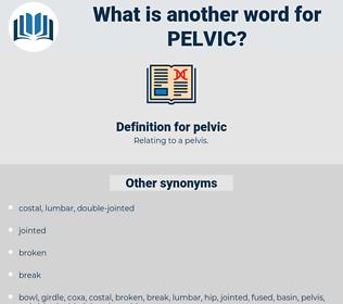 pelvic, synonym pelvic, another word for pelvic, words like pelvic, thesaurus pelvic