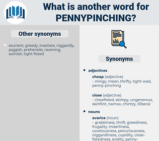 pennypinching, synonym pennypinching, another word for pennypinching, words like pennypinching, thesaurus pennypinching